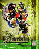 Troy Polamalu 2011 Portrait Plus Photo