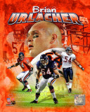 Brian Urlacher 2011 Portrait Plus Photo