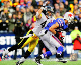 Troy Polamalu 2010 Action Photo