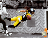 Troy Polamalu 2010 Spotlight Action Photographie