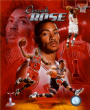 NBA Derrick Rose 2011 Portrait Plus Photo