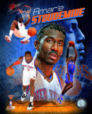 Amare Stoudemire 2011 Portrait Plus Photo