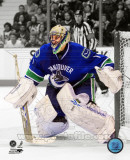 Roberto Luongo 2010-11 Spotlight Action Photo