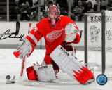 NHL Jimmy Howard 2010-11 Spotlight Action Photo