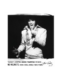 Elvis: No Regrets Poster
