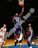 Zach Randolph 2010-11 Action Photo