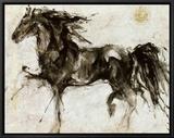 Lepa Zena Framed Canvas Print by Marta Gottfried