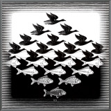 Sky and Water Framed Canvas Print by M. C. Escher