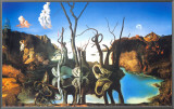 Reflections of Elephants Framed Canvas Print by Salvador Dal&#237;