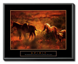 Spirit: Horses Framed Canvas Print
