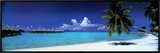 Palm Island Retreat Framed Canvas Print