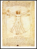 Vitruvian Man, c.1492 Framed Canvas Print by  Leonardo da Vinci