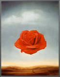 Rose Meditative, c.1958 Framed Canvas Print by Salvador Dalí