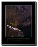 Perseverance: Lone Pinyon Tree Framed Canvas Print