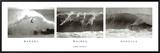 Makaha, Waimea, Honolua Framed Canvas Print by Leroy Grannis