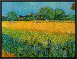 View of Arles with Irises Framed Canvas Print