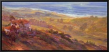Hilltop I Framed Canvas Print by Rick Delanty