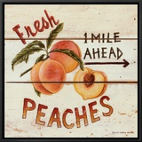 Fresh Peaches Framed Canvas Print by David Carter Brown