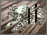 Puddle Framed Canvas Print by M. C. Escher