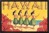 Hawaii Framed Canvas Print