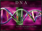 DNA Framed Canvas Print