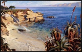 La Jolla Cove Framed Canvas Print by John Comer