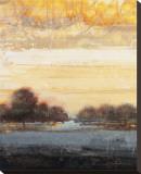 Restoration I Stretched Canvas Print by Simon Addyman