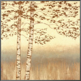 Birch Silhouette I Framed Canvas Print