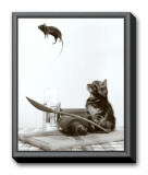 Cat and Mouse Framed Canvas Print