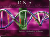 DNA Stretched Canvas Print