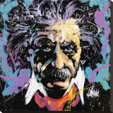 Einstein Stretched Canvas Print by David Garibaldi