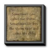 Sometimes God Calms Framed Canvas Print by Karen Tribett