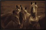 Bad Girls Framed Canvas Print by Tony Stromberg
