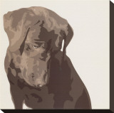 Chocolate Labrador Stretched Canvas Print by Emily Burrowes