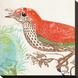 Red Bird Stretched Canvas Print by Swan Papel
