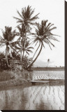 Coco Palms, Oahu, 1926 Stretched Canvas Print