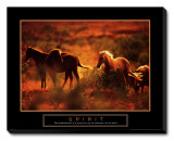 Spirit: Horses Stretched Canvas Print