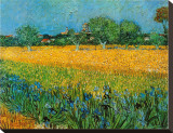 View of Arles with Irises Stretched Canvas Print