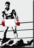 Muhammad Ali: Gloves Stretched Canvas Print