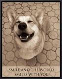 Smile and the World Smiles with You Framed Canvas Print by Jim Dratfield