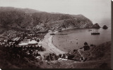 Avalon Harbor, Santa Catalina Island, California 1885 Stretched Canvas Print