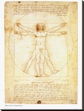 Vitruvian Man, c.1492 Stretched Canvas Print by  Leonardo da Vinci