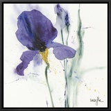 Iris I Framed Canvas Print by  Marthe