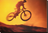 Challenge: Mountain Bike Stretched Canvas Print
