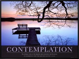 Contemplation Framed Canvas Print