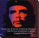 Che Guevara: Revolutionary Stretched Canvas Print