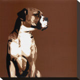Boxer Stretched Canvas Print by Emily Burrowes