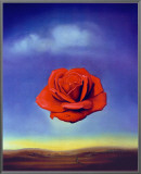 Rose Medidative, c.1958 Framed Canvas Print by Salvador Dalí