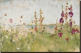 Hollyhocks by the Sea Stretched Canvas Print by Cheri Blum