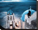 Chat en Grece Stretched Canvas Print by Hans Silvester